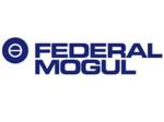 automatisme industriel federal mogul